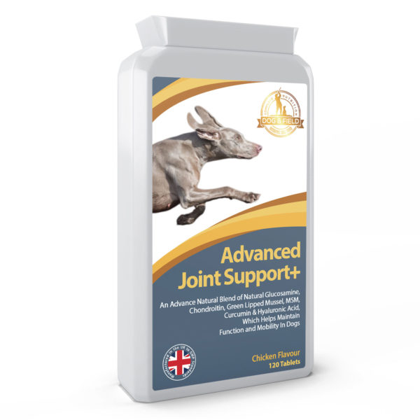 Dog and Field Advanced Joint Support+ -120 tablets