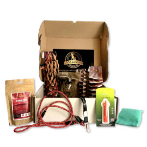 advanced gundog training kit