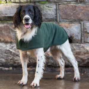 Dog & Field olive green towelling coat