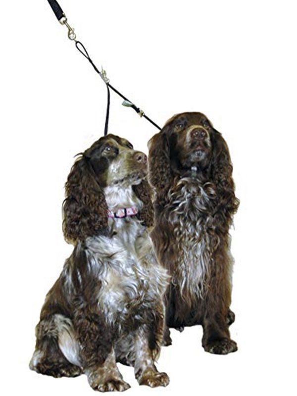 Double Dog Coupler