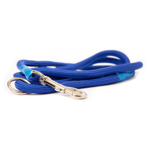 Dog and Field Blue Nylon Clip Lead
