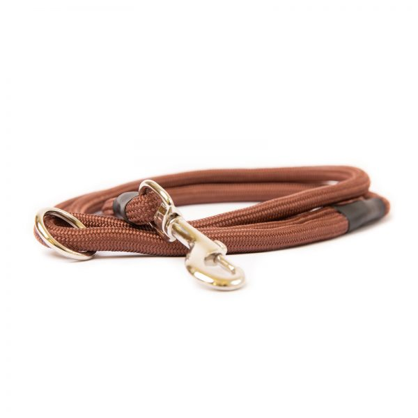 Dog and Field Brown Nylon Clip Lead