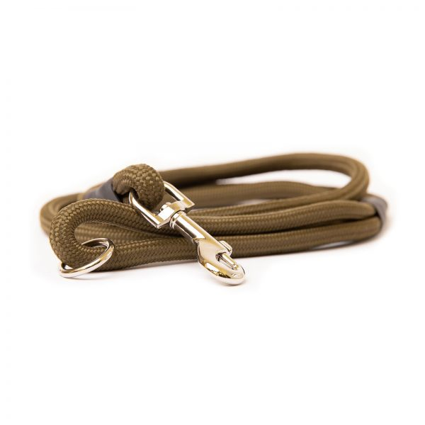 Dog and Field Green Nylon Clip Lead