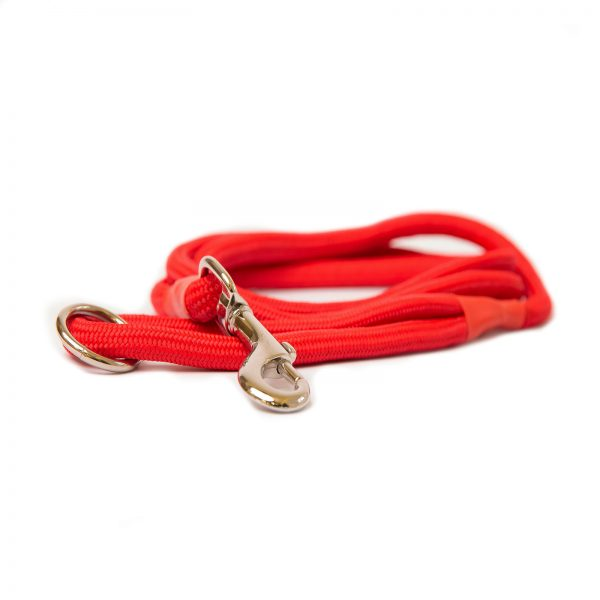Dog and Field Red Nylon Clip Lead