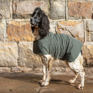 medium size waterproof dog coat