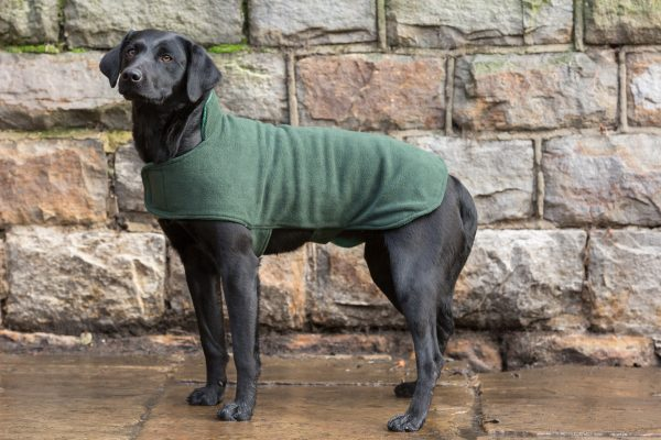 Dog & Field™ Duel Layer Olive Toweling Coat - Sizes XS - XXL-657
