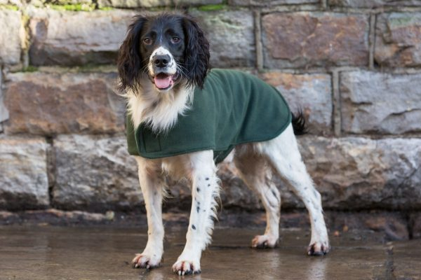 Dog & Field™ Duel Layer Olive Toweling Coat - Sizes XS - XXL-653