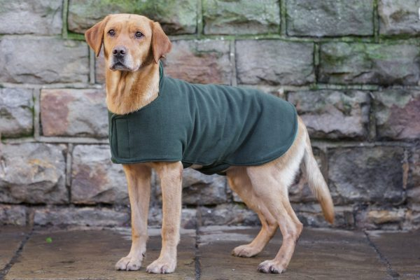 Dog & Field™ Duel Layer Olive Toweling Coat - Sizes XS - XXL-656