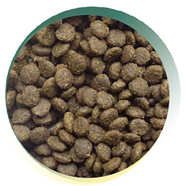 dog-and-field-keepers-complete-kibble