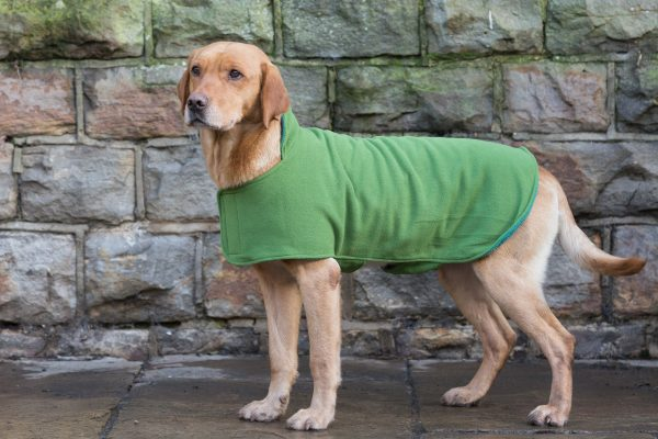 Dog & Field™ Duel Layer Light Green Toweling Coat - Sizes XS - XXL-644