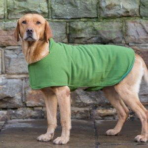 Dog & Field™ Duel Layer Light Green Toweling Coat - Sizes XS - XXL-0