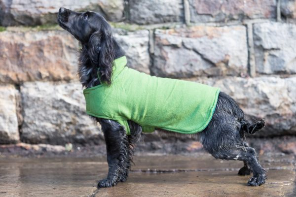 Dog & Field™ Duel Layer Light Green Toweling Coat - Sizes XS - XXL-643