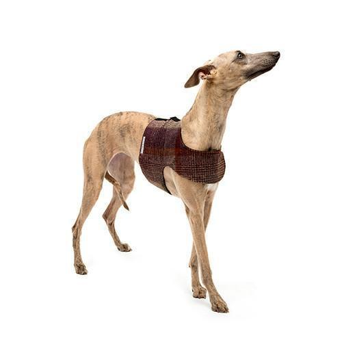 Grape Check Tweed Soft Dog Harness