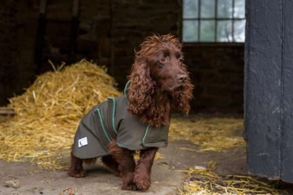 Extra Small Waterproof Dog Coat