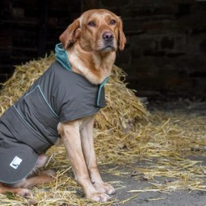 Extra Large Waterproof Dog Coat